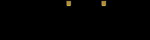 Logo Indigita